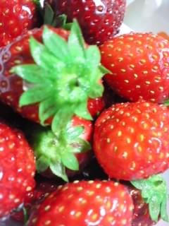 小さき 果実